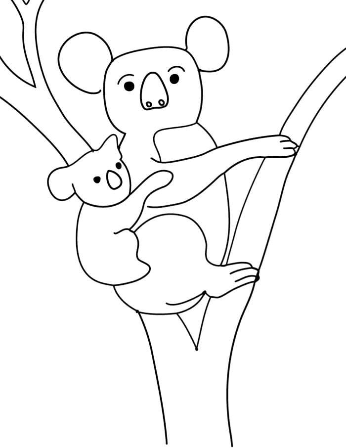 kolala bear coloring page to print