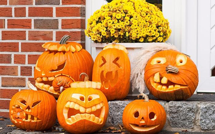 pumpkin halloween photography