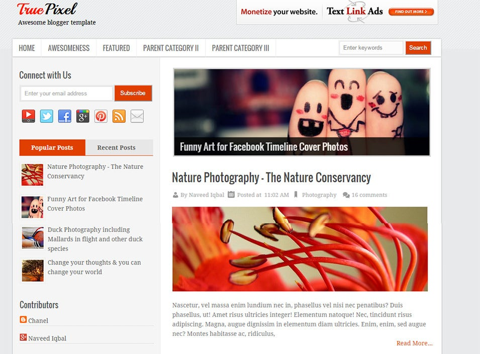 Photography Blog Themes Templates Free Premium Templates - Timeline blogger template