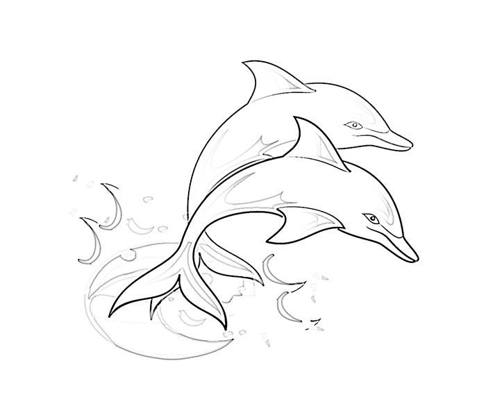twin dolphin coloring page