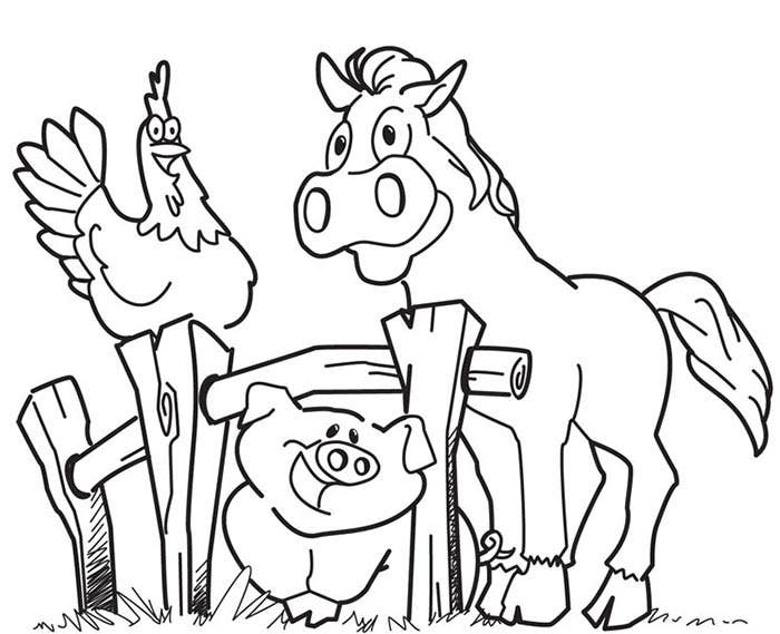 animal coloring page template