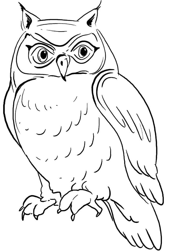 dark outlined owl shape coloring page template