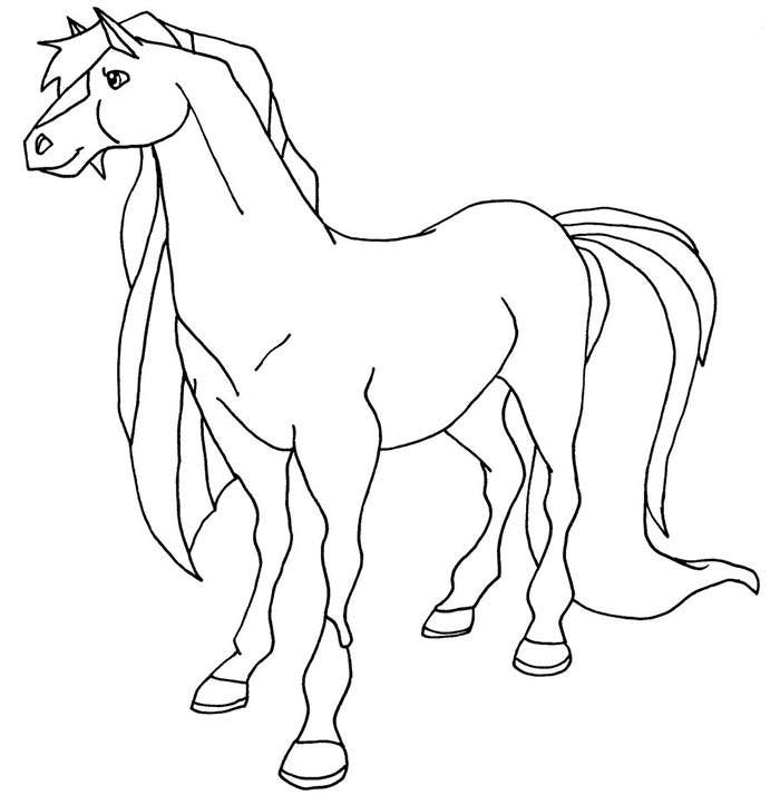 donkey coloring page template