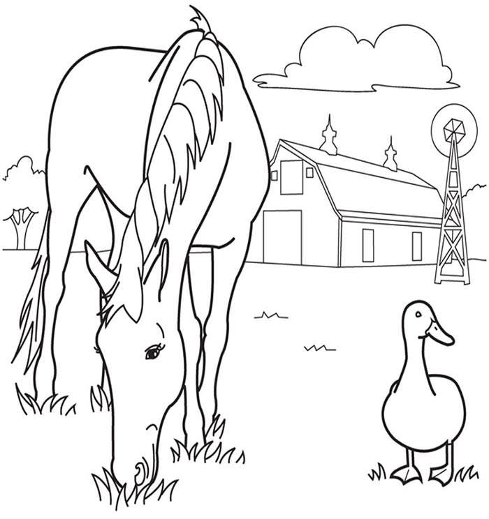 two animal in one frame coloring page