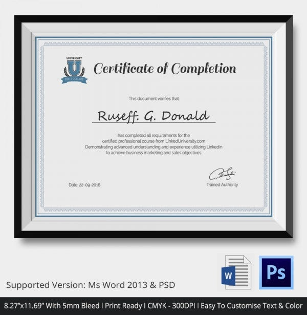 Certificate of Completion Template 31 Free Word PDF PSD EPS – Work Completion Certificate Format