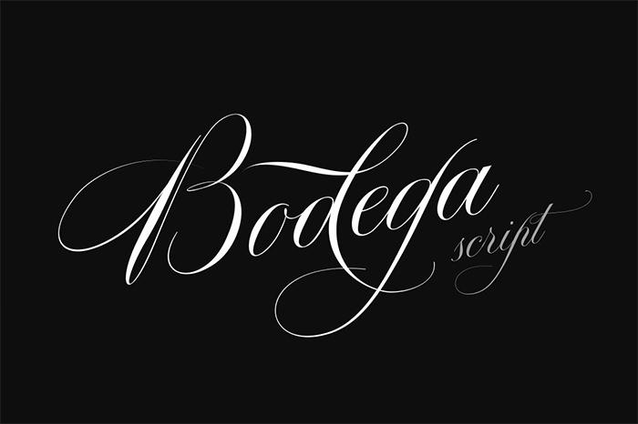 Bodega Curisve Tattoo Script