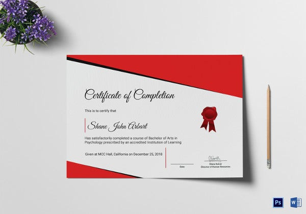 Certificate of Completion Template - 34+ Free Word, PDF ...