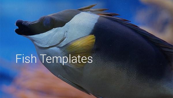 fishtemplates