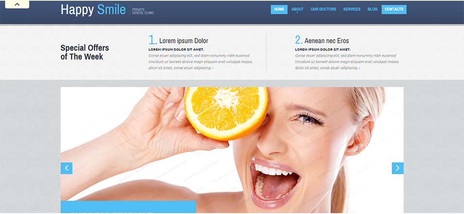 live preview for website template 52394