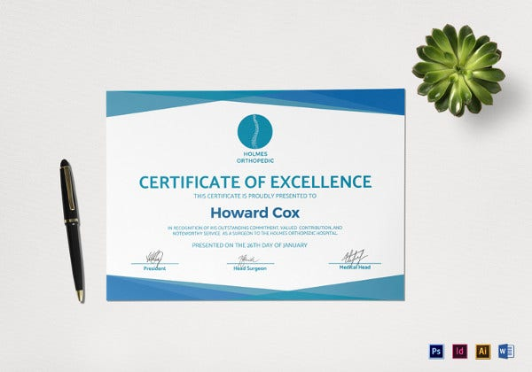 medical excellence sample certificate template