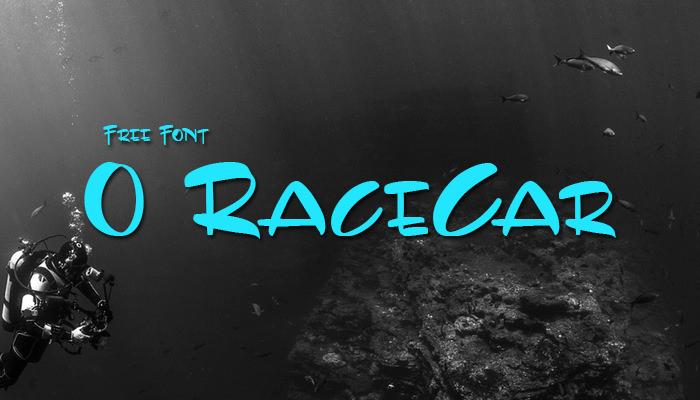 0 RaceCar Casu...