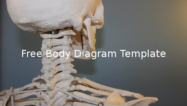 free body diagram template