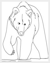 Bear Template Download