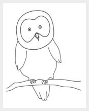 Owl Template Sample