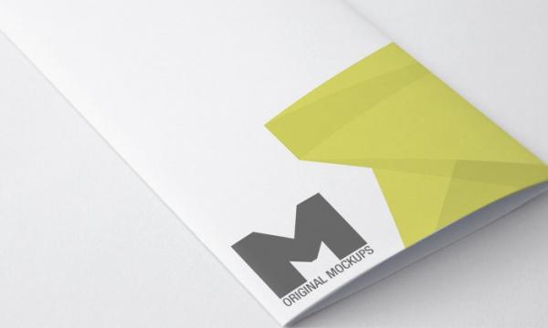 Tri Fold Broucher MockUp 01