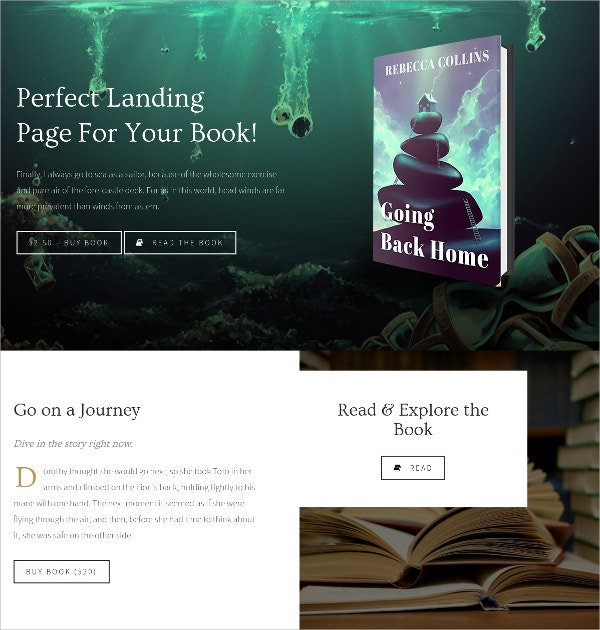 Book Landing & Reading Sales Page WordPress Theme $54
