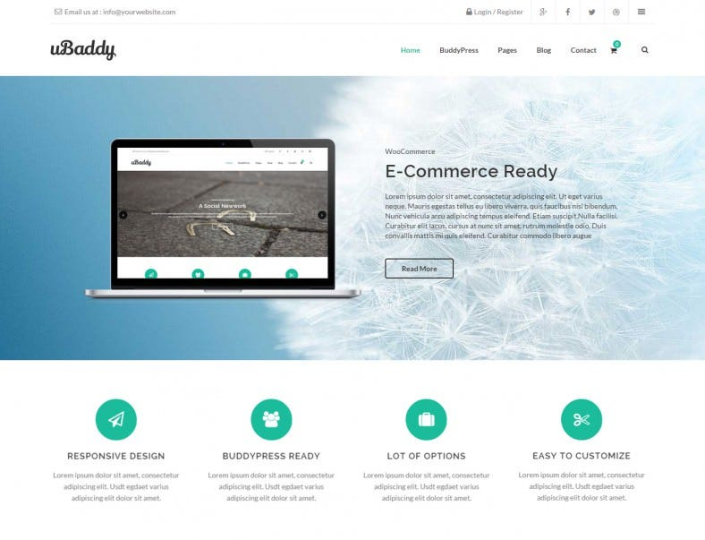 business buddypress wordpress theme 788x603