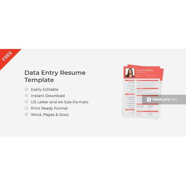 Data Modeler Resume: 61+ Free Sample, Example, Format