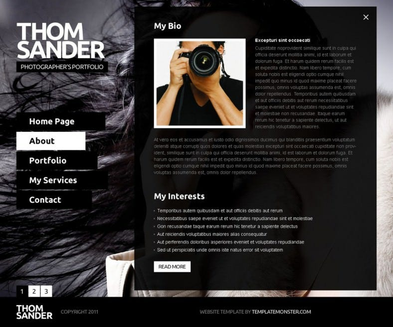 http://www.templatemonster.com/free-templates/free-website-template-full-javascript-photography.php