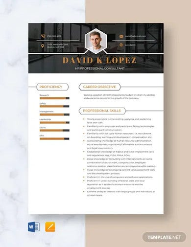 hr professional consultant resume template