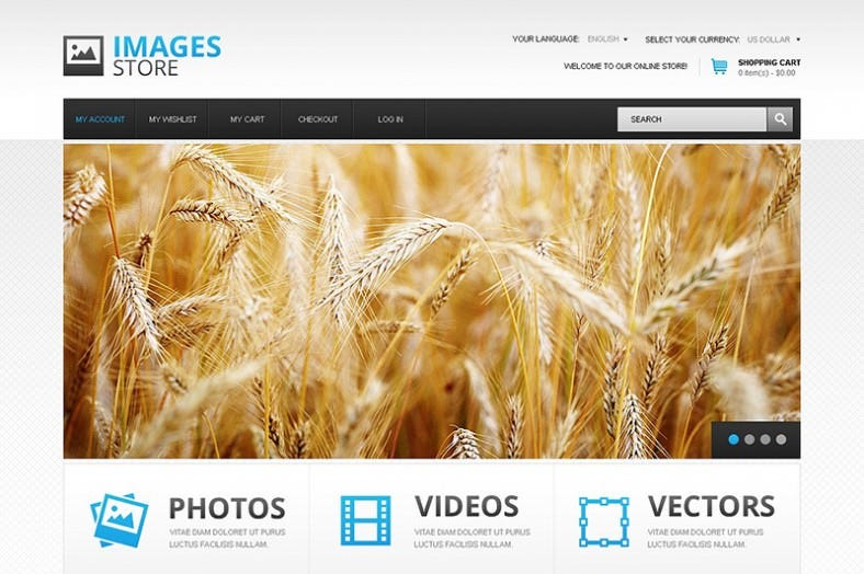 images store magento theme 788x524