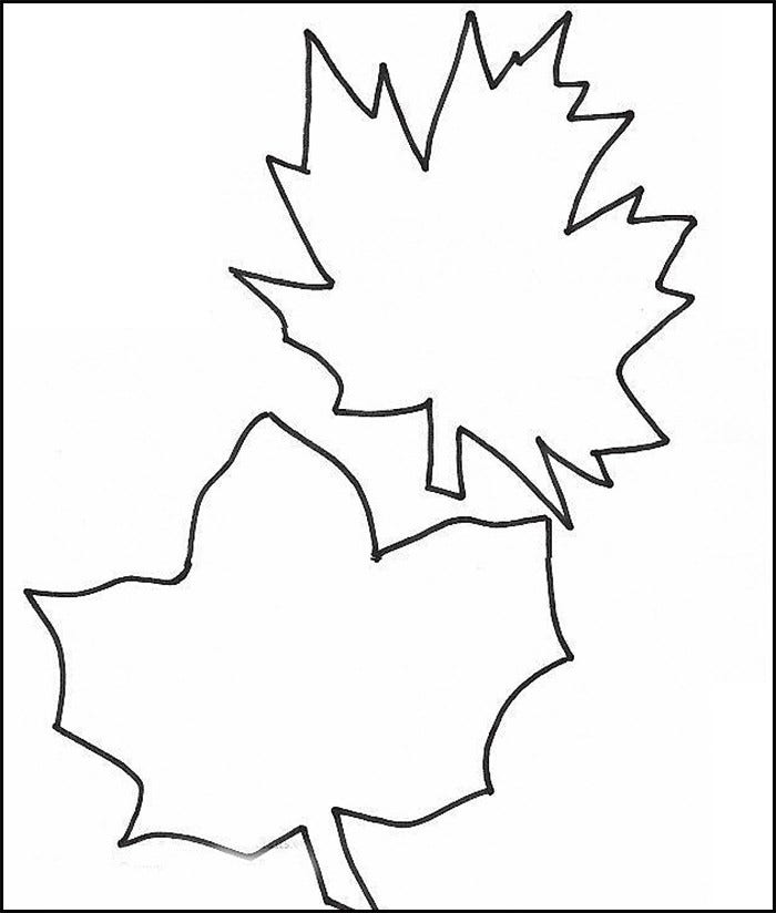 Leaf template printable leaf templates free premium for Jungle leaf templates to cut out