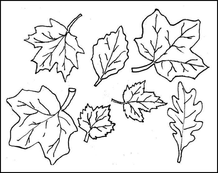 leaf template cut out - Leaf Templates