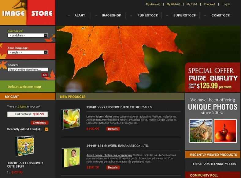 Magento Theme for Online Art Store