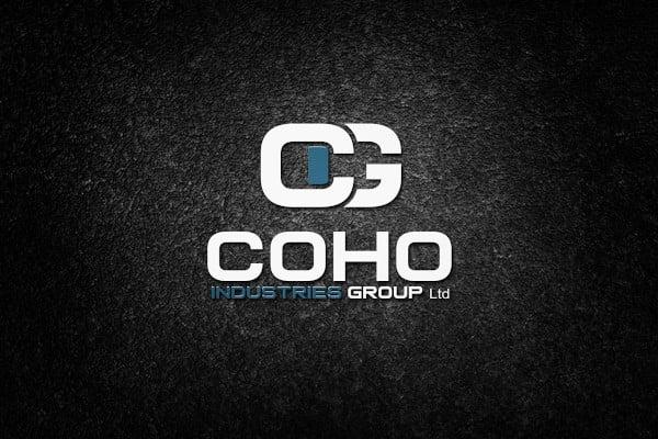 psd logo design mockup template1