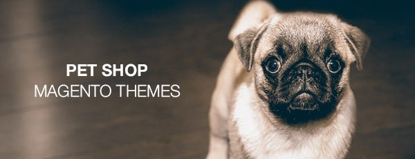 pet shop magento themes2