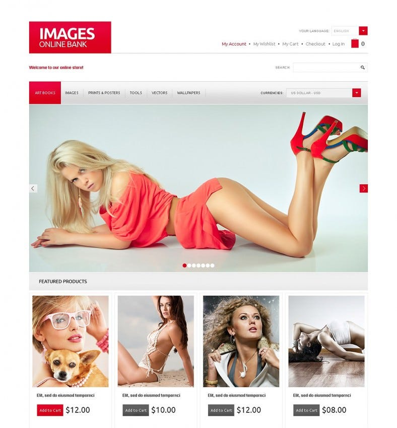 photographer design magento template 788x848