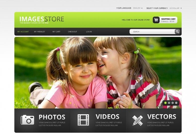 premium image store magento template 788x537