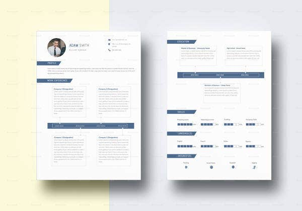 Professional Accounting Resume Template