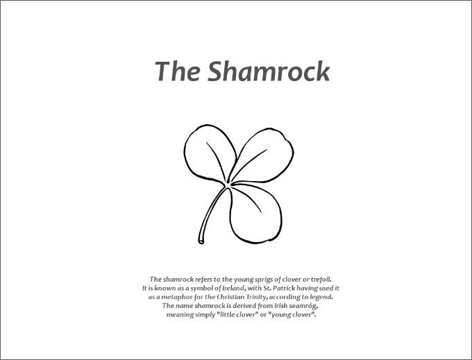 shamrock coloring pages picture