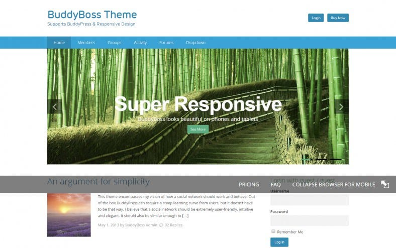 social network buddypress theme