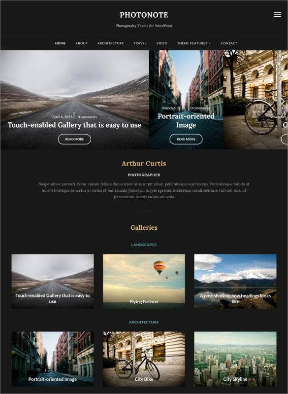 stylish photoblog wordpress website template1
