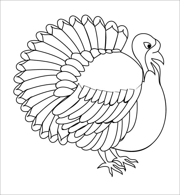 turkey wattle coloring pages - photo#6