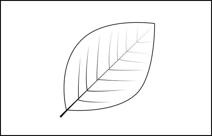 picture relating to Free Printable Leaf Template named Leaf Template Printable Leaf Templates Free of charge High quality