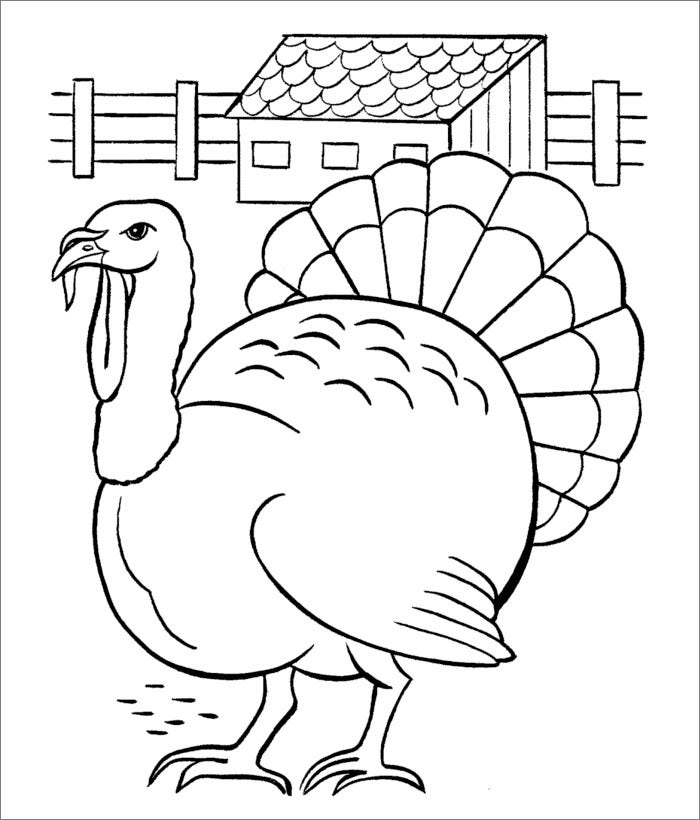 This is an image of Enterprising Turkey Outline Printable