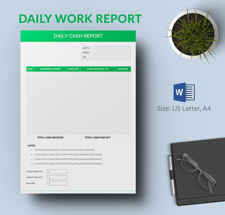 daily cash report format