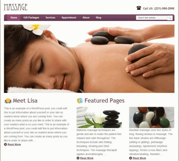 download massage therapist wordpress template