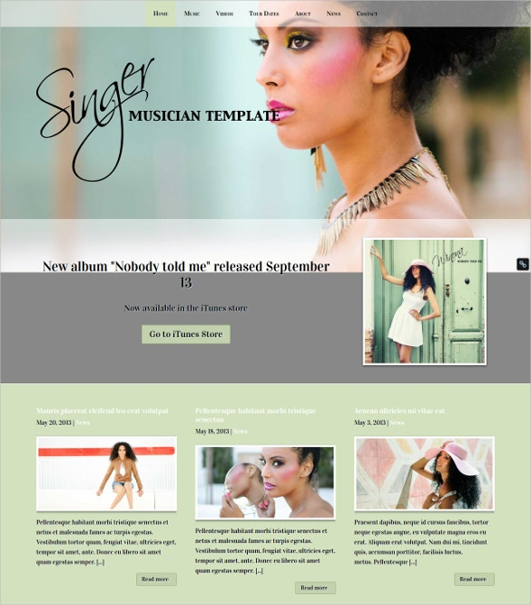the singer wordpress theme