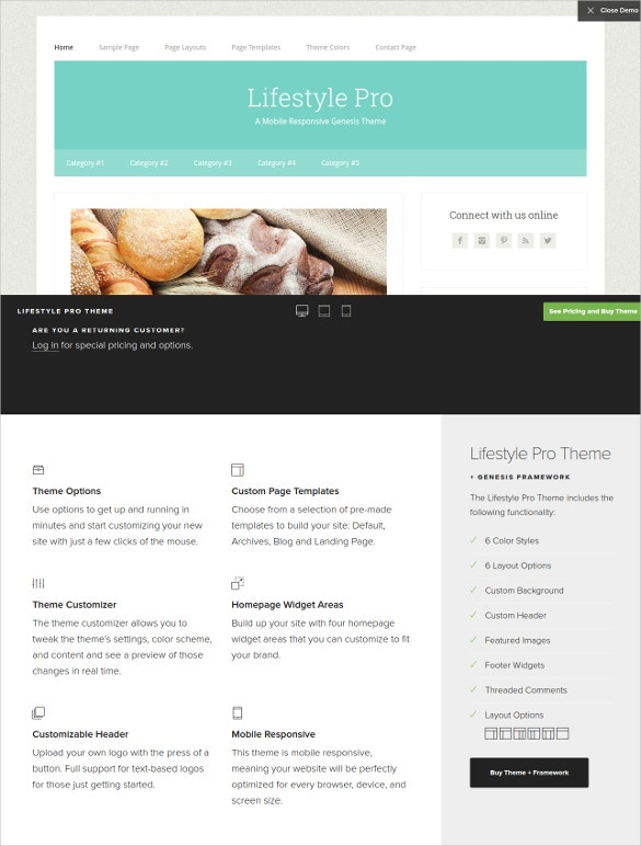 lifestyle pro wordpress blog theme
