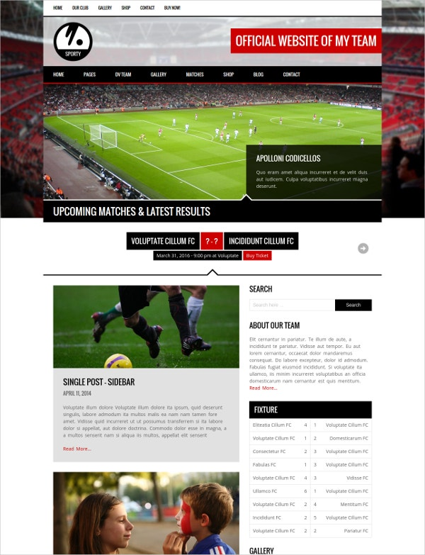 Baseball Responsive WordPress Theme for Sport Clubs