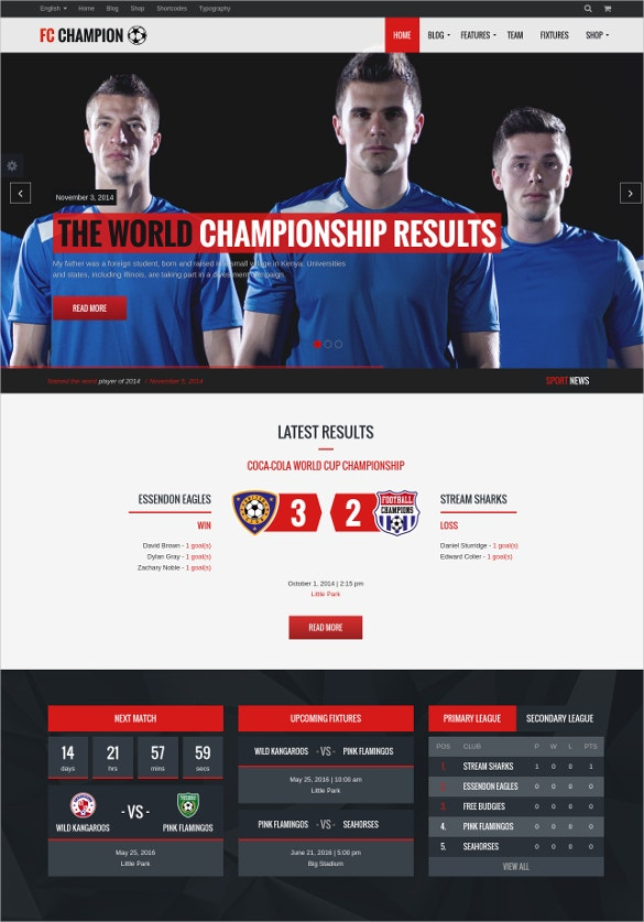 Soccer & Football WordPress Theme