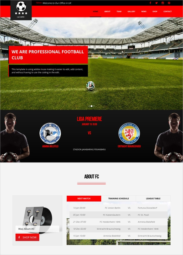 Soccer &  Football Club WordPress Theme
