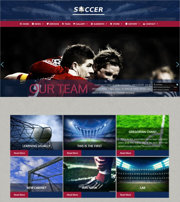 Customized Football WordPress Theme