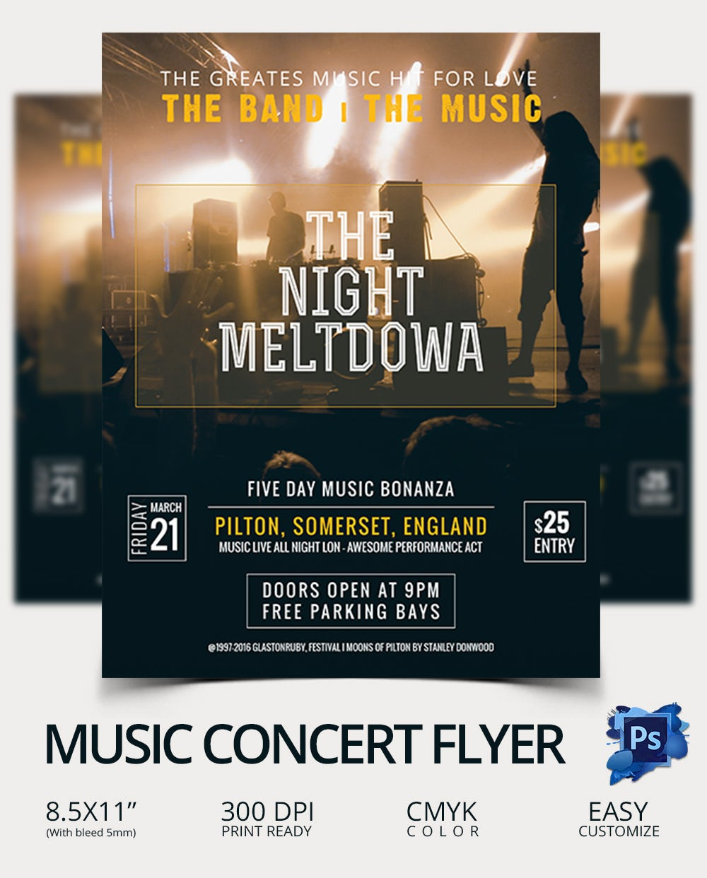 Editable Concert Flyer Template
