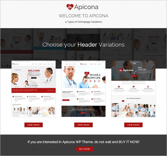 apicona health medical wordpress theme1