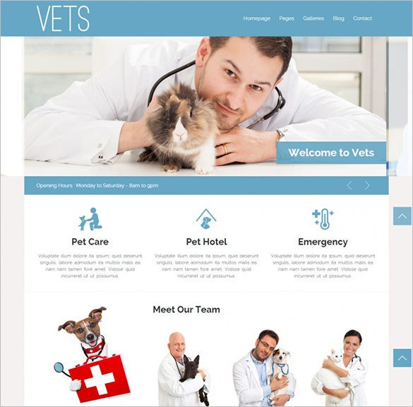veterinary medical health clinic wp theme1